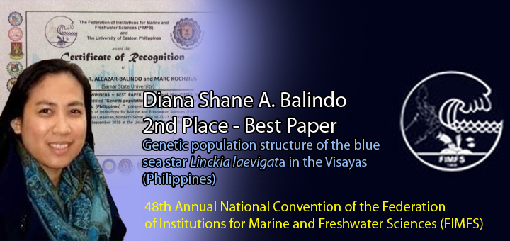 Balindo 2nd Best Paper FIMFS